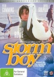 stormboy
